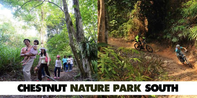 chestnut-nature-park-south-opens