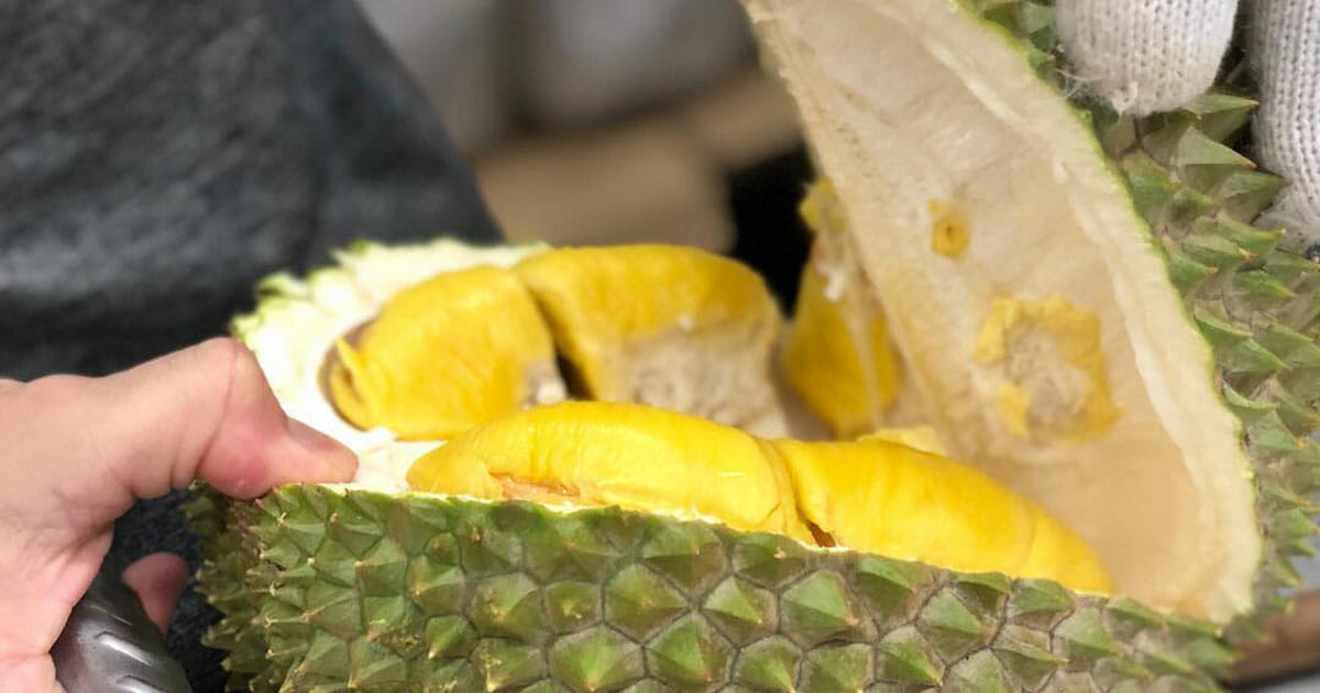 MSW Durian prices drop below $20 per kg, could fall even more in mid-December