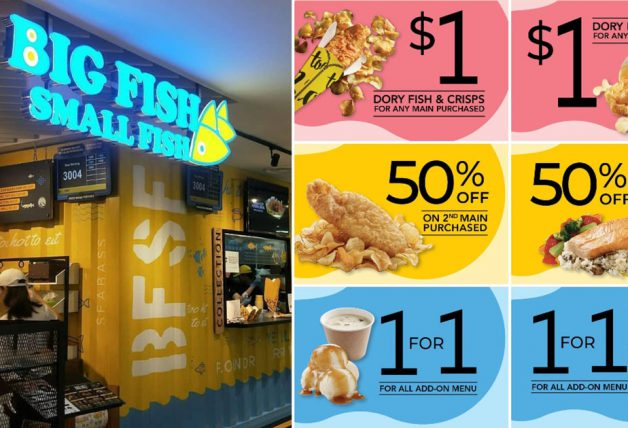 Big Fish Daily Promo Code
