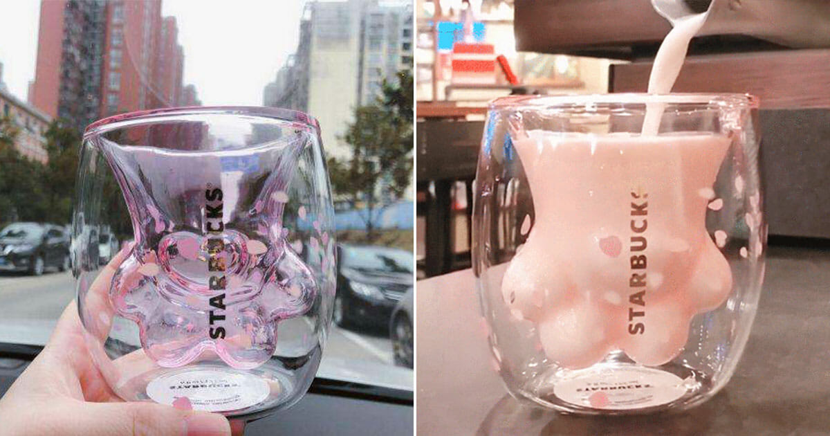 Starbucks in China has a new Cat-Paw Cup that is driving fans and collectors crazy. You can even buy it on Taobao now