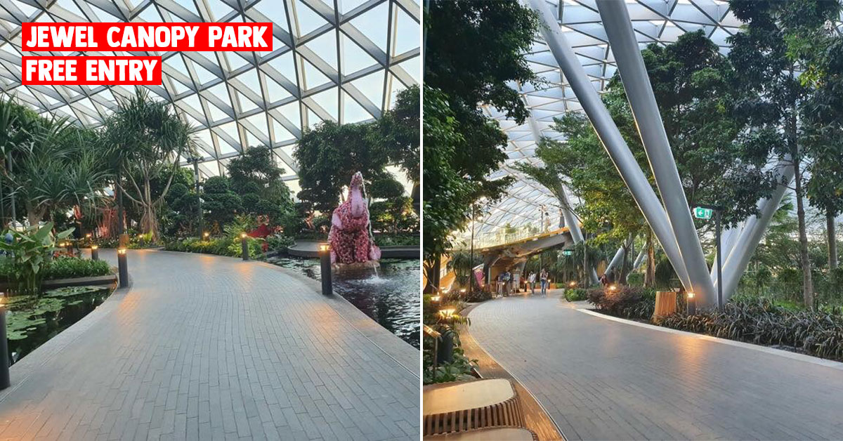 Jewel Changi Airport offers Free Entry to Canopy Park till Mar 31, has Cherry Blossoms inside so you won't miss Japan