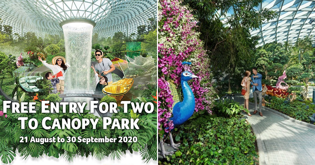 Jewel Changi Airport offers FREE entry to Canopy Park from now till Sept 30, no minimum spend required