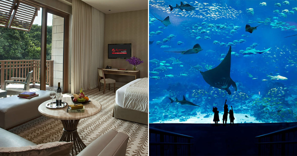Resorts World Sentosa offers Staycation Packages from $328 nett, has free breakfast & S.E.A. Aquarium tickets