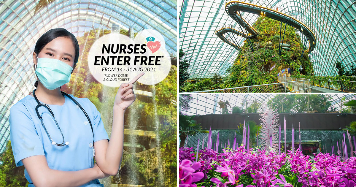 Gardens by the Bay lets Nurses Enter FREE to Flower Dome & Cloud Forest attractions till Aug 31