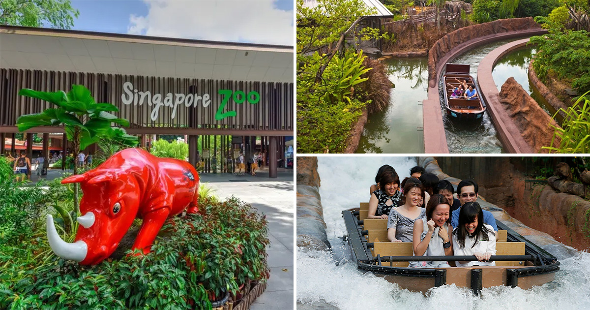 Enjoy 50% OFF to Singapore Zoo & River Safari from $13 per ticket with this Promo Code till Aug 29